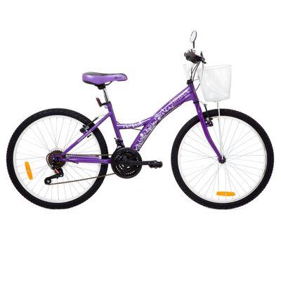 Bicicleta Aro 24 - Aço Urban Teen Roxa - Tito Bikes