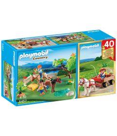 Playmobil-Campo---40-Aniversario---Set-de-Poneis-Charrete---5457