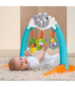 Ginasio-de-Atividades---Hippo-Gym---Chicco-1
