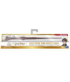 Varinha-do-Misterio---Harry-Potter---Wizarding-World---Harry---Sunny-0