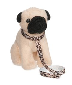 cachorro-our-generation-pug-pup-candide