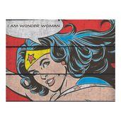 Placa-de-Madeira-Decorativa---DC-Comics---Mulher-Maravilha---36x50-Cm---Metropole