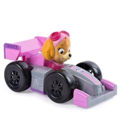 Carrinho-Patrulha-Canina---Roadster-Racer---Skye---Sunny