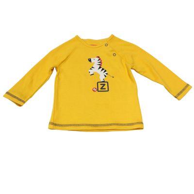 Blusao-Manga-Longa-Ragla-em-Suedine---Zebra-3D---Amarelo---Fisher-Price---P