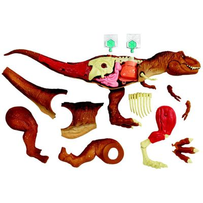 Figura-Articulada---Jurassic-World---T-Rex-Dino-Anatomia---Mattel