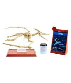 Figura-Basica---Jurassic-World-2---Esqueleto-Jurassico---Pteranodon---Mattel_Frente