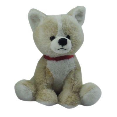 cachorrinho-de-raca-spitz-new-toys-19NT226_Frente
