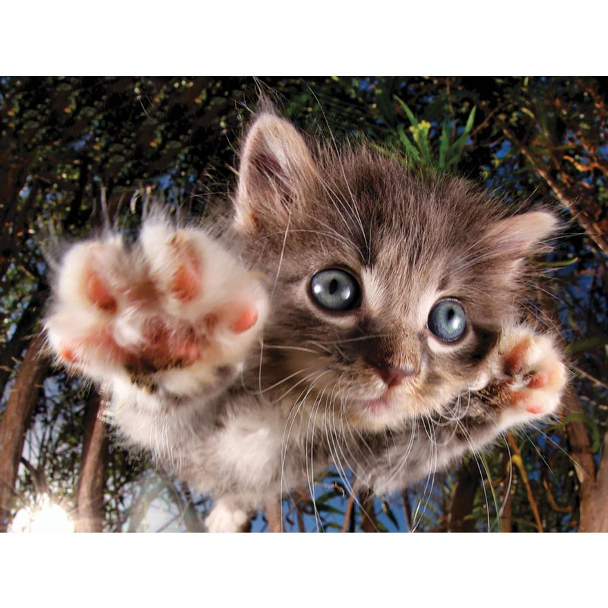 quebra-cabeca-3d-500-pecas-gato-multikids-BR1051_Detalhe1