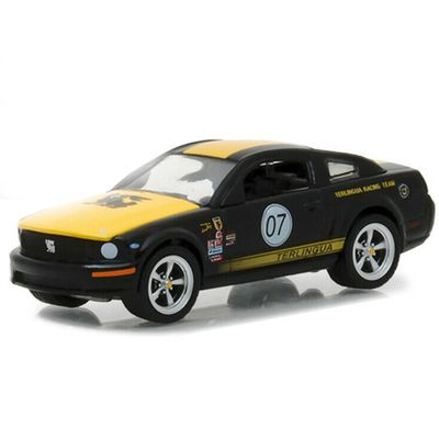 mini-veiculo-die-cast-1-64-2008-ford-mustang-terlingua-racing-team-07-greenlight-california-toys-GRE1-64_frente