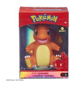 Figura-de-Vinyl----Pokemon---Charmander---Sunny-0